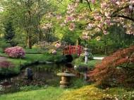 Według japońskich mistrzów ogród ma być elegancki, ale w taki sposób, jakby stworzyła go natura.